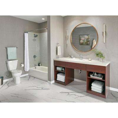 Eden Statuary 24 in. x 48 in. Polished Porcelain Floor and Wall Tile (7 cases / 112 sq. ft. / pallet)