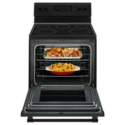 5.3 cu. ft. Electric Range Shatter-Resistant Cooktop in Black
