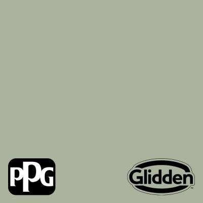 Gargoyle PPG1127-4 Paint