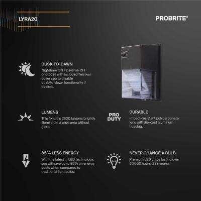 20-Watt Integrated LED Wall Pack Dark Bronze 2500 Lumens Dusk to Dawn Outdoor Light, Outdoor Security Lighting (2-Pack)