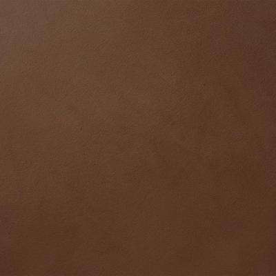 13 in. x 19 in. #SU108 Twisted Pinyon Suede Specialty Paint Chip Sample
