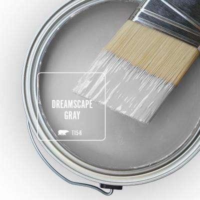 T15-6 Dreamscape Gray Paint