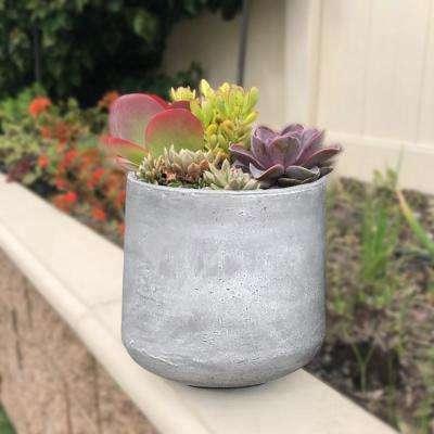 Medium 13 in. x 13 in. x 13.4 in. Light Gray Lightweight Concrete Footed Tulip Planter