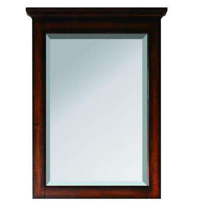 Tropica 24 in. x 32 in. Beveled Edge Mirror in Antique Brown