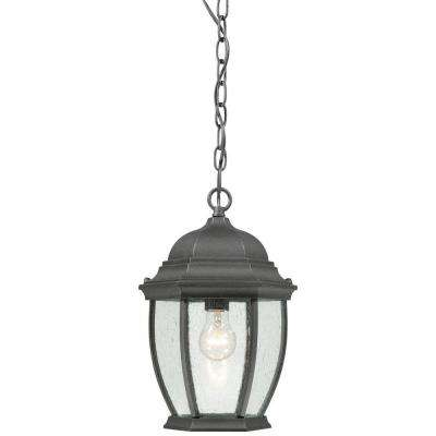 Covington 1-Light Hanging Outdoor Black Lantern