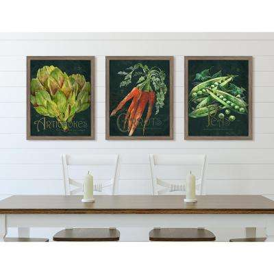 "16 in. x 13 in. ""Seed Packet Carrots"" Framed Giclee Print Wall Art"
