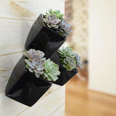 Cube 5 1/2 in. x 6 in. Black Ceramic Wall Planter