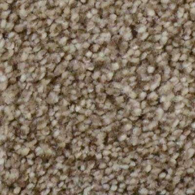 Carpet Sample - Harvest II - Color Skytop Texture 8 in. x 8 in.