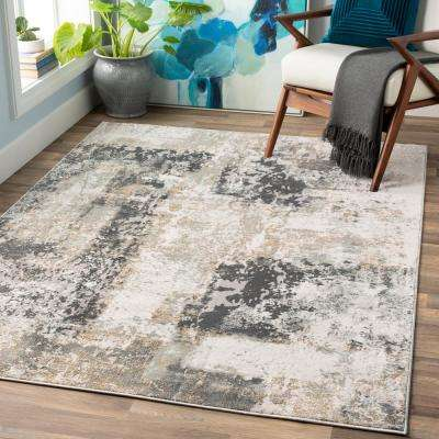 Fortunata Gray 2 ft. x 3 ft. Abstract Area Rug