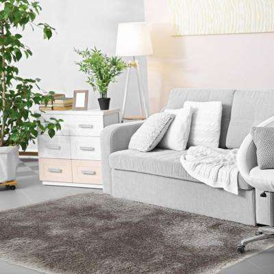 Glimmer Grey 2 ft. x 3 ft. Shag Area Rug