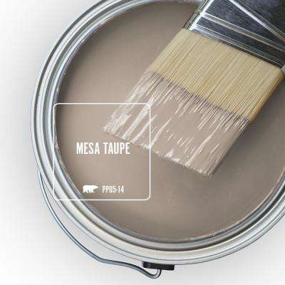 PPU5-14 Mesa Taupe Paint