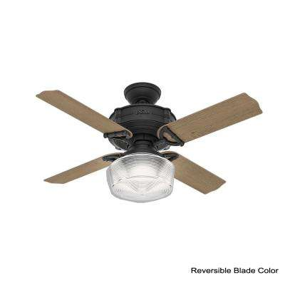 Brunswick 44 in. LED Indoor Natural Iron Ceiling Fan with Globe Light Kit and Handheld Remote Control