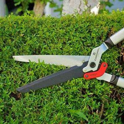 DualLINK + Hedge Shear