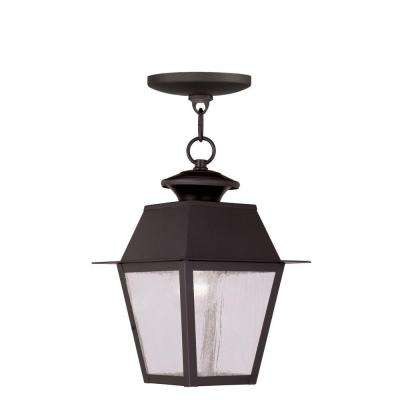 Providence 1-Light Bronze Outdoor Incandescent Hanging Lantern