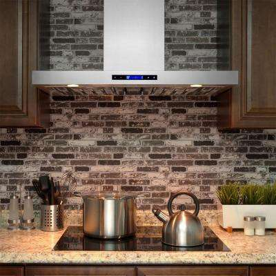 30 in. Convertible Kitchen Wall Mount Range Hood in Stainless Steel with Remote, Touch Control and Carbon Filter