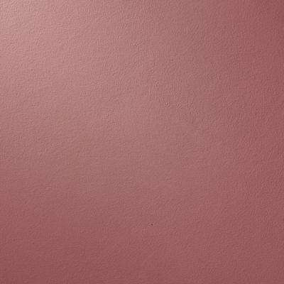 13 in. x 19 in. #SU126 Red River Suede Specialty Paint Chip Sample