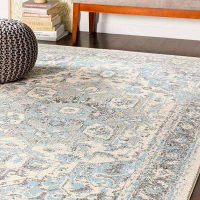 Kathy Pale Blue 7 ft. 10 in. x 10 ft. 3 in. Oriental Area Rug