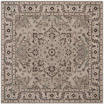Antiquity Gray/Beige 6 ft. x 6 ft. Square Area Rug