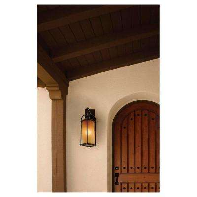 Dakota 1-Light Heritage Bronze Outdoor 20.625 in. Wall Lantern Sconce