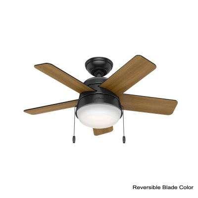Tarrant 36 in. LED Indoor Matte Black Ceiling Fan with Light Kit
