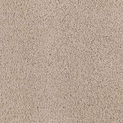 Carpet Sample - Wesleyan I - Color Shorescape Texture 8 in. x 8 in.