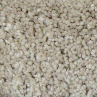 Carpet Sample - Great Moments II (S) - Color Jouney's End Texture 8 in. x 8 in.