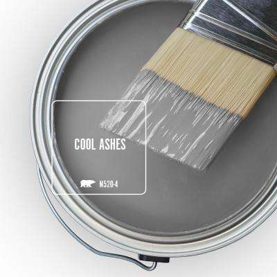 N520-4 Cool Ashes Paint