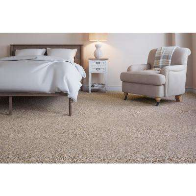 Carpet Sample - Collinger I Color - Reflection Texture 8 in. x 8 in.