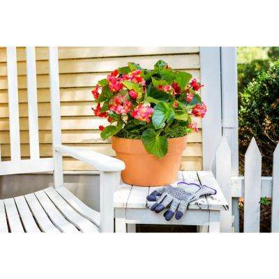 6.75 in. Terra Cotta Clay Azalea Pot