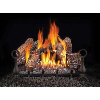 24 in. Vented Natural Gas Log Set with Electronic Ignition