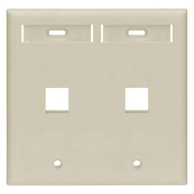 2-Gang Quickport Standard Size 2-Port Wallplate with ID Windows, Ivory
