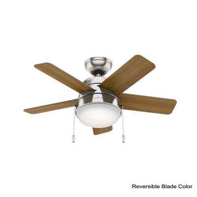 Tarrant 36 in. LED Indoor Brushed Nickel Ceiling Fan
