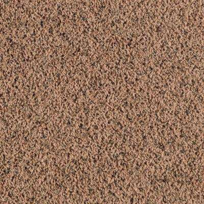 Carpet Sample - Bassano II - Color Sunset Twist 8 in. x 8 in.