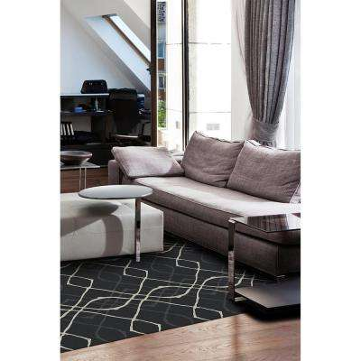 Washable Amara Black 5 ft. x 7 ft. Stain Resistant Area Rug