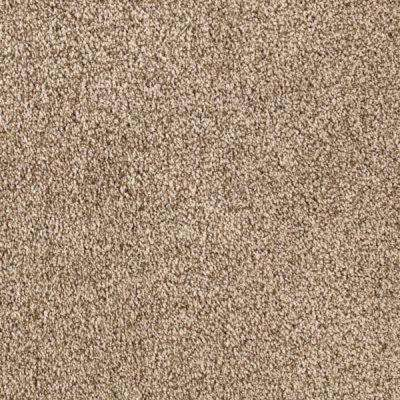 Carpet Sample - Pitch's Gate II - Color Pebble Texture 8 in. x 8 in.