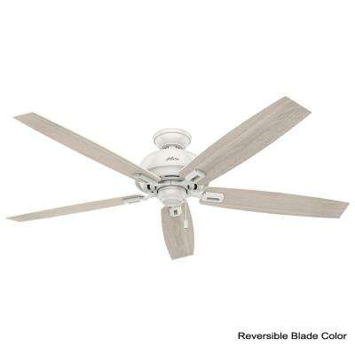 Donegan 60 in. LED Indoor Fresh White Ceiling Fan with Light and bundled with Universal Remote Control