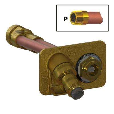 3/4 in. FPT x 10 in. Freezeless Brass Wall Hydrant with Double-Check Backflow Preventer