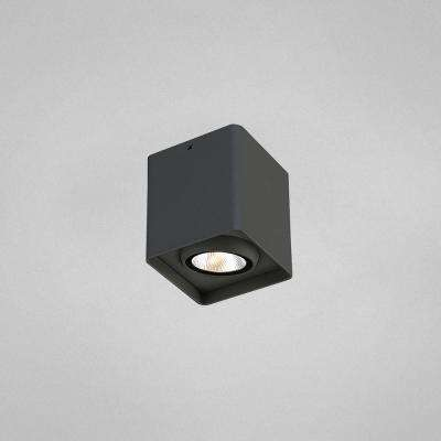 Graphite Grey Integrated LED Outdoor Flush Mount