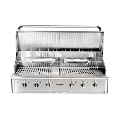 Precision 6-Burner Built-In Stainless Steel Natural Gas Grill