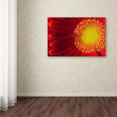 "16 in. x 24 in. ""Nature's Beauty"" by PIPA Fine Art Printed Canvas Wall Art"