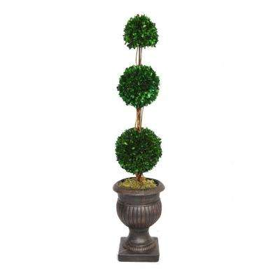 44 in. Triple Ball Natural Preserved Boxwood Arrangement in Black and Brown Planter