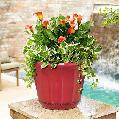 Westbourne Flange 15 in. Dia Chili Resin Planter