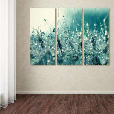 "32 in. x 42 in. ""Under the Sea"" by Beata Czyzowska Young Printed Canvas Wall Art"