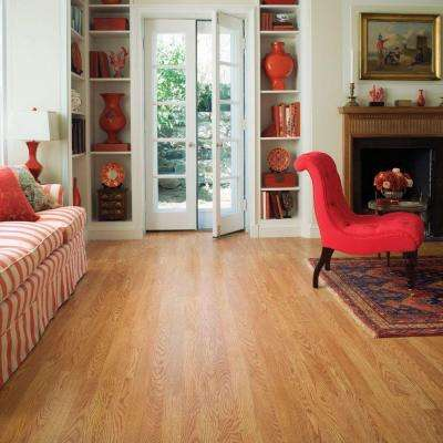 XP Royal Oak 10 mm Thick x 7-1/2 in. Wide x 47-1/4 in. Length Laminate Flooring (19.63 sq. ft. / case)
