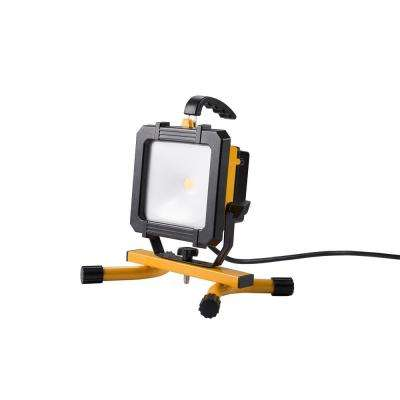 2500 Lumen LED Portable Work Light