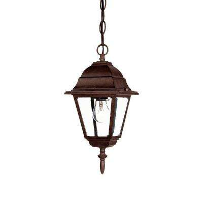 Builder's Choice Collection 1-Light Outdoor Burled Walnut Hanging Lantern