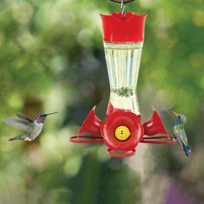 Clear Pinch Waist Glass Hummingbird Feeder - 8 oz. Capacity