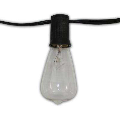 Edison Vintage 10-Light 12 ft. String Light With Clear Antique Bulbs