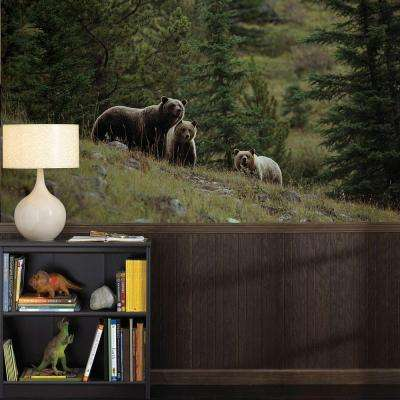 72 in. H x 48 in. W Bears Wall Mural