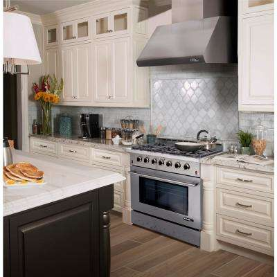Entree Bundle 36 in. 5.5 cu. ft. Pro-Style Liquid Propane Range Convection Oven Range Hood in Stainless Steel and Black